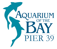 Aquarium of The Bay Events
